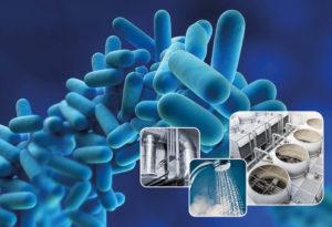 Legionellosi rischio sanitario